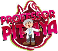 LOGO professor